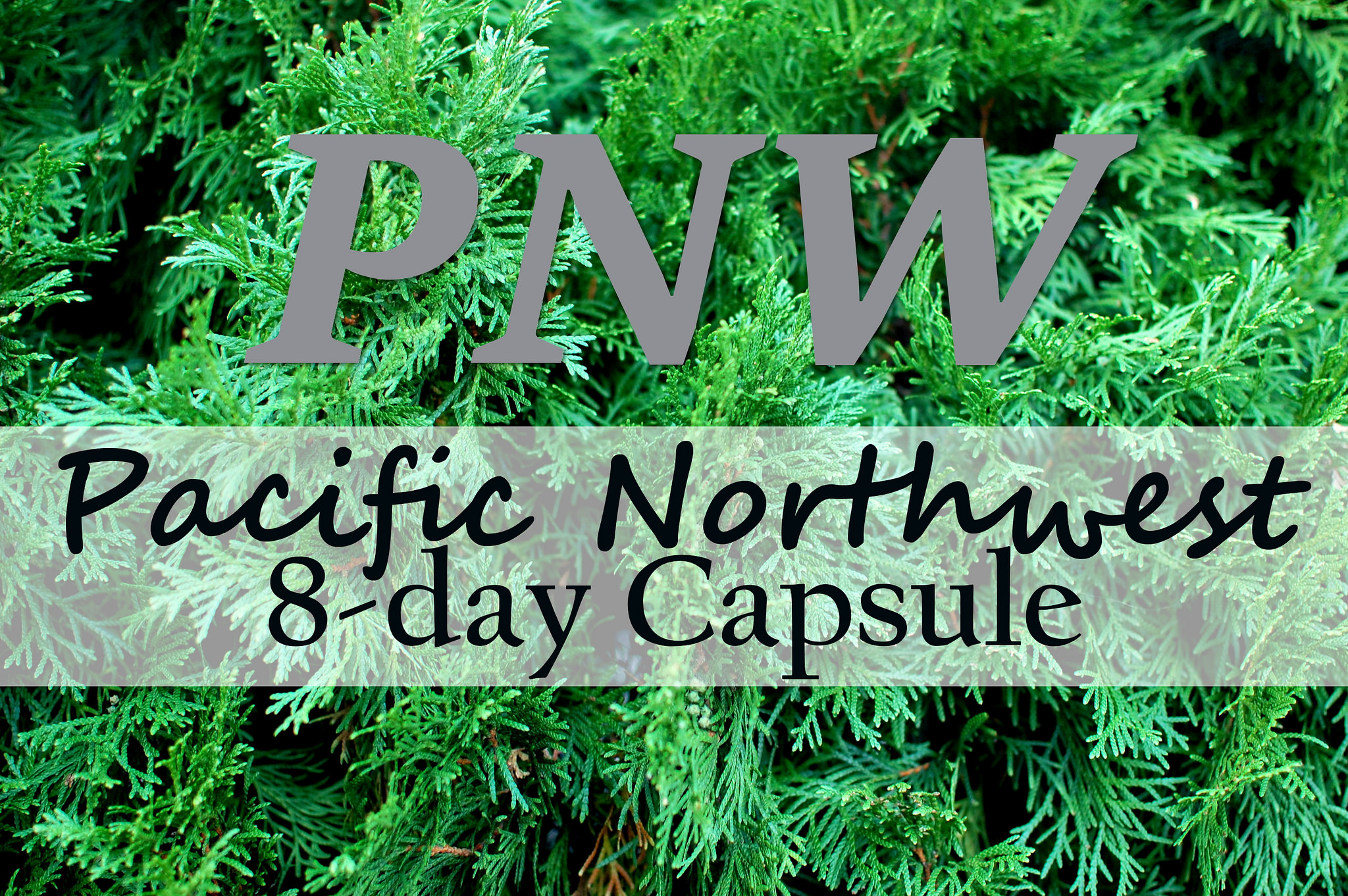 capsule wardrobe pnw pacific northwest business casual daily outfit blog ootd whatiwore2day