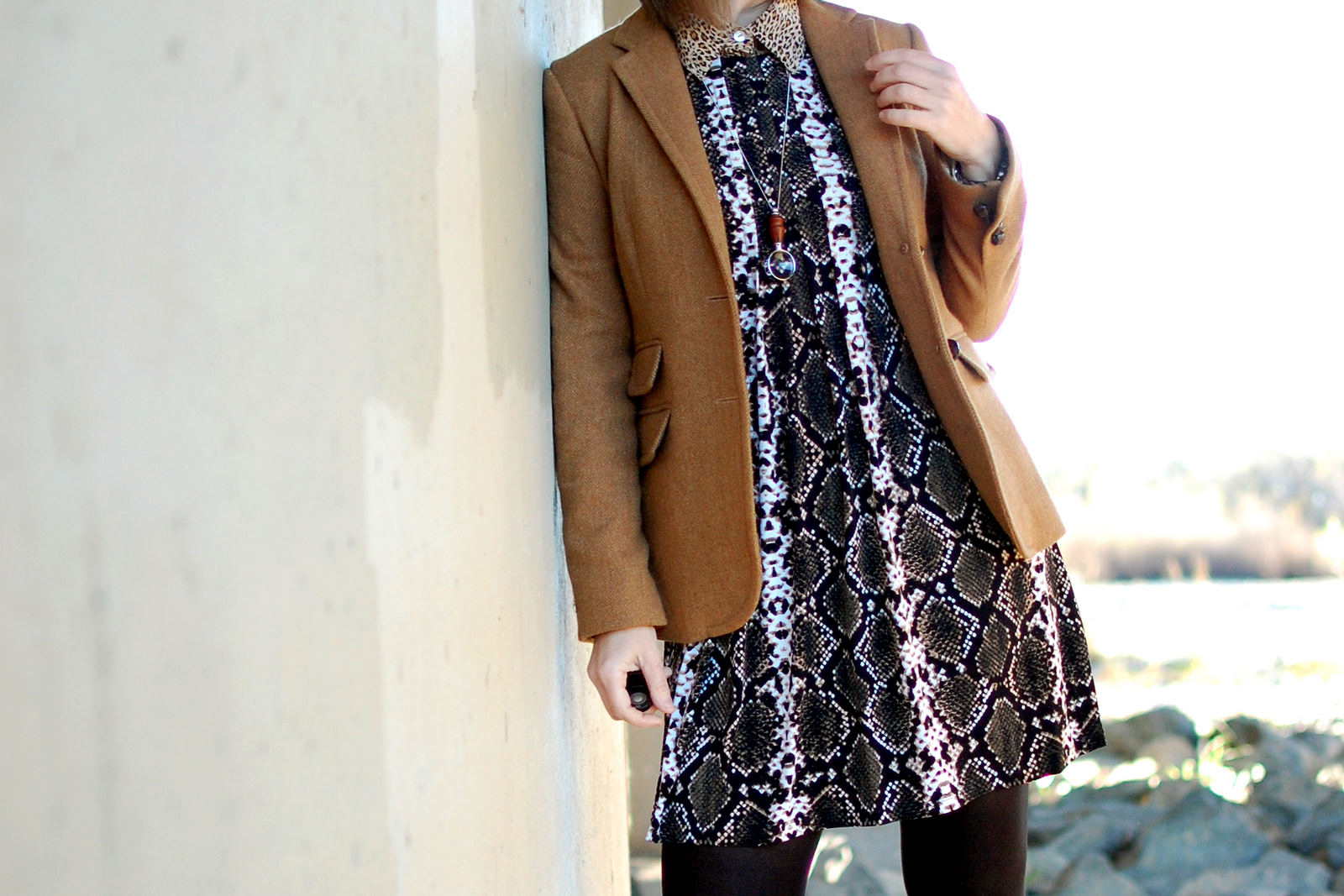 snake dress leopard blouse khaki wool blazer daily outfit blog ootd whatiwore2day